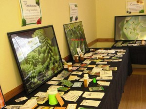 One of several tables of seeds